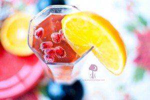 Pomegranate Poinsettia
