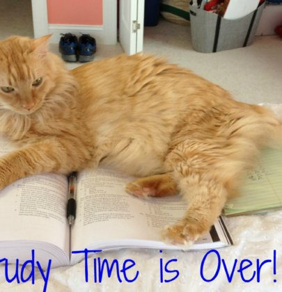 Weekend Wrap Up: Study Time is Over!