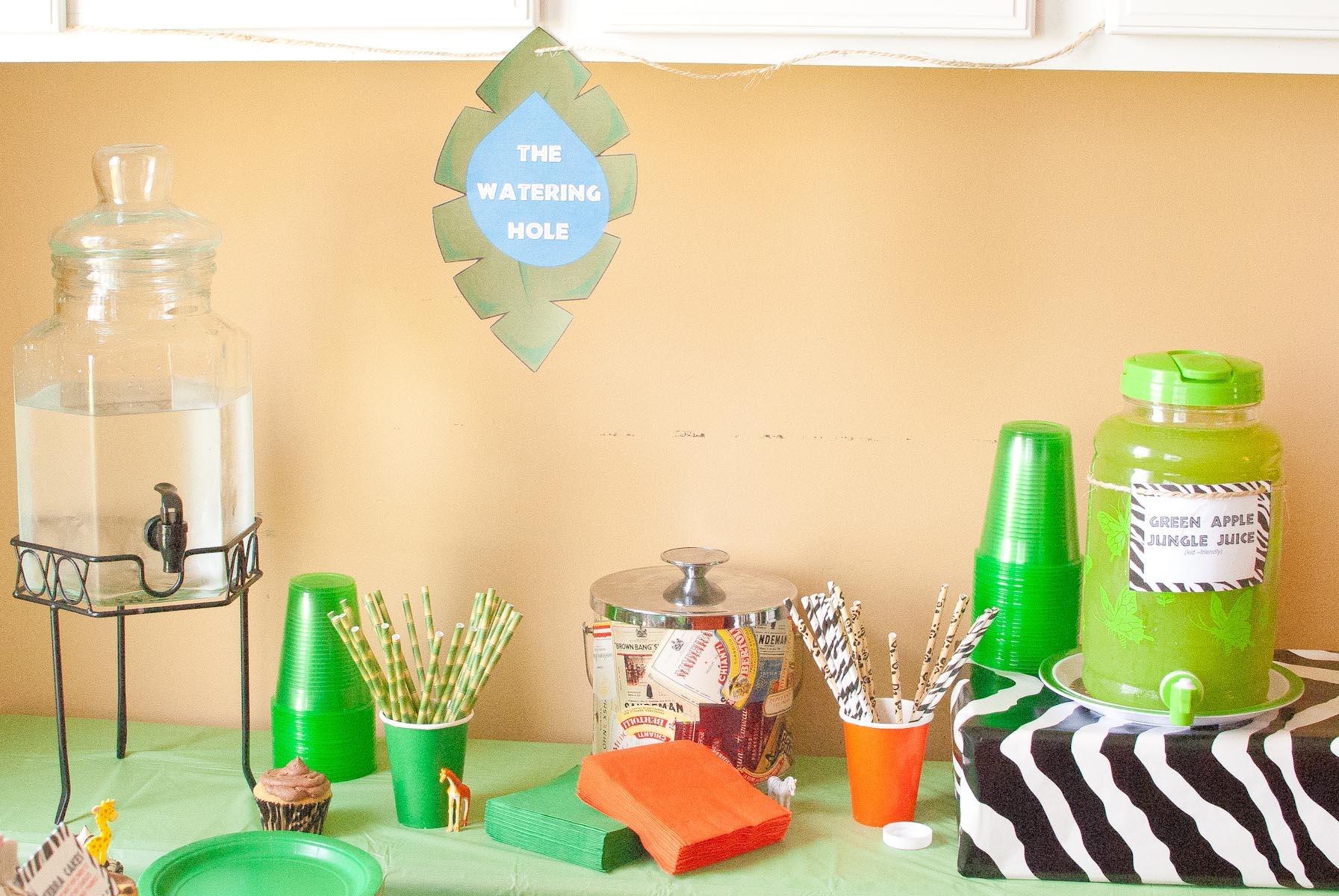 Owen's 1st Birthday Safari Party-1