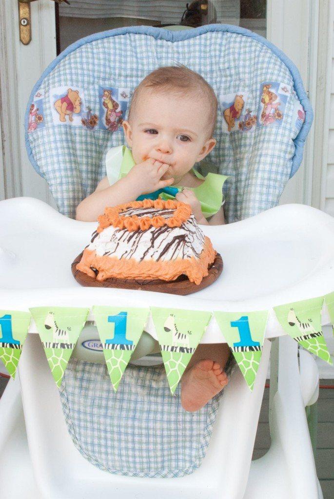 Owen's 1st Birthday Safari Party-26-2