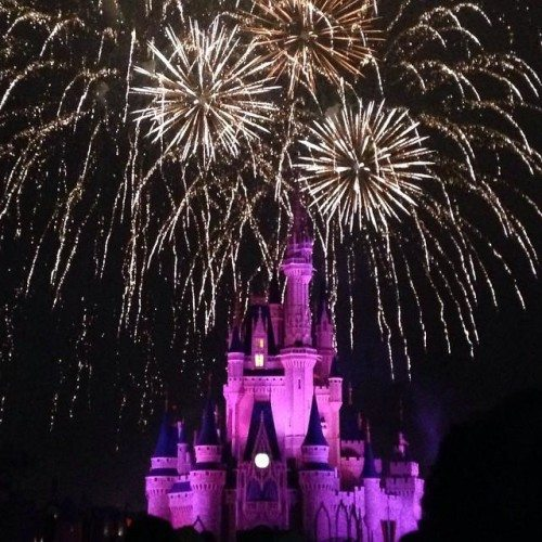 Food Blog Forum 2015 Recap Part 1: Walt Disney World